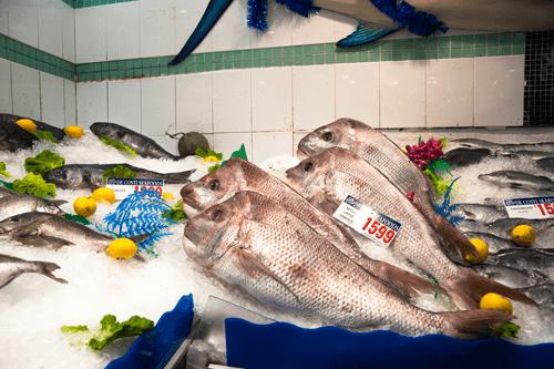 fish-market-07