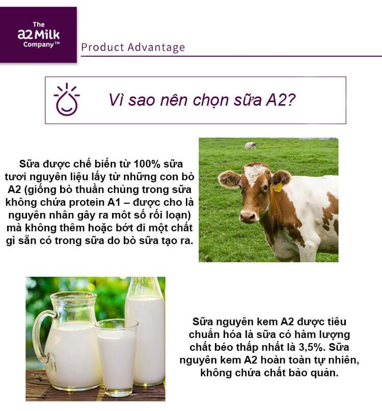 Sữa tươi dạng bột nguyên kem A2